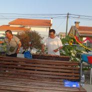 Sardinhada no Centro de Dia e Arraial CCQC